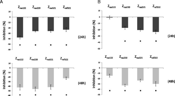 Inhibitory effects of H-Ras/Raf-1-binding affibody molecules