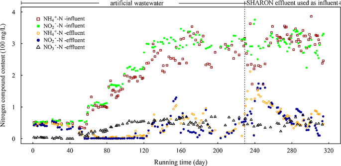 Microbial community dynamics in an ANAMMOX reactor for