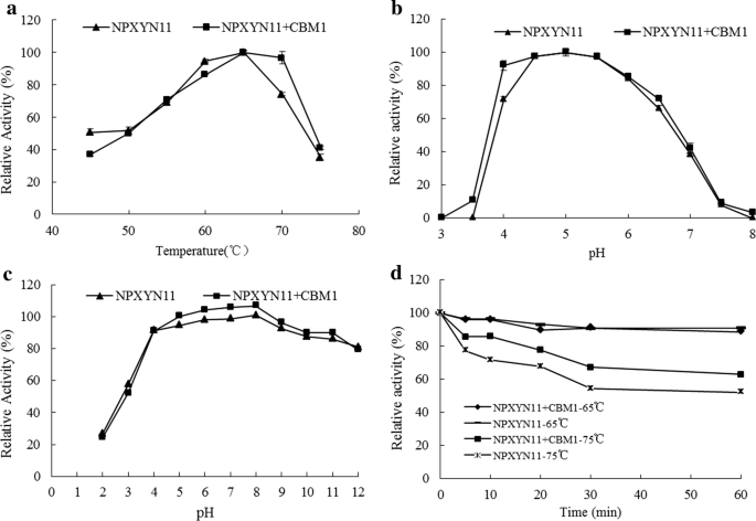 Synergistic effect of acetyl xylan esterase from Talaromyces