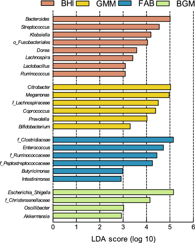 Evaluation of the effects of four media on human intestinal