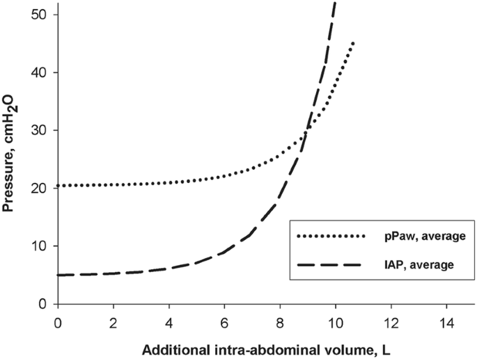 Ventilation in patients with intra-abdominal hypertension