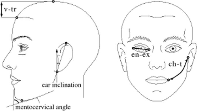 Age estimation via face images: a survey | EURASIP Journal
