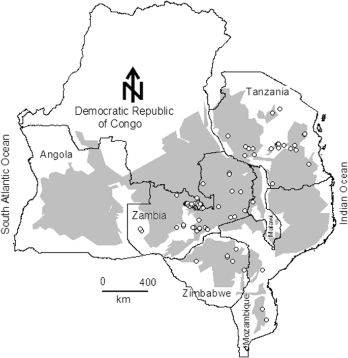 How have carbon stocks in central and southern Africa's miombo