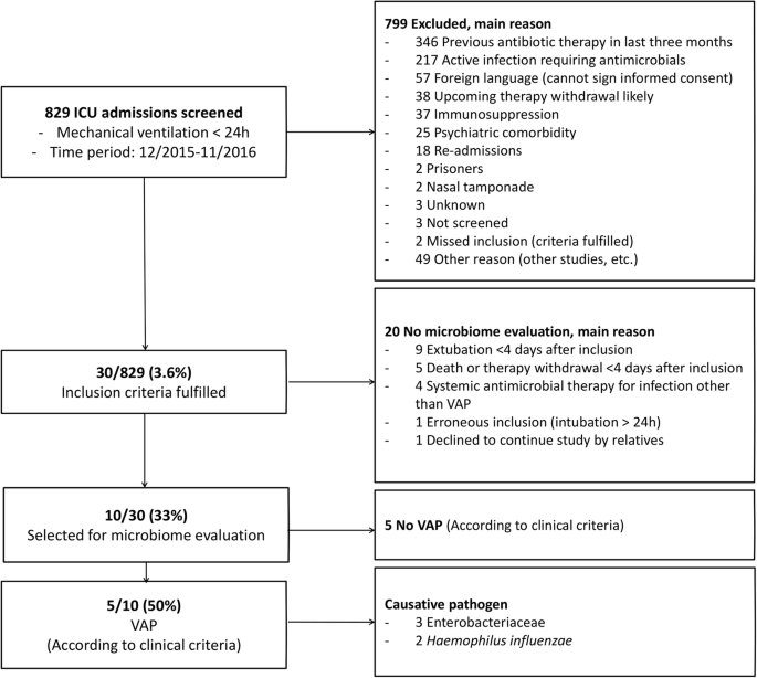 Patterns in the longitudinal oropharyngeal microbiome