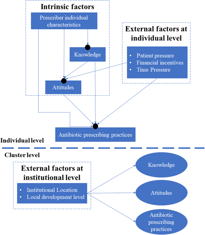 Intrinsic and external determinants of antibiotic prescribing: a