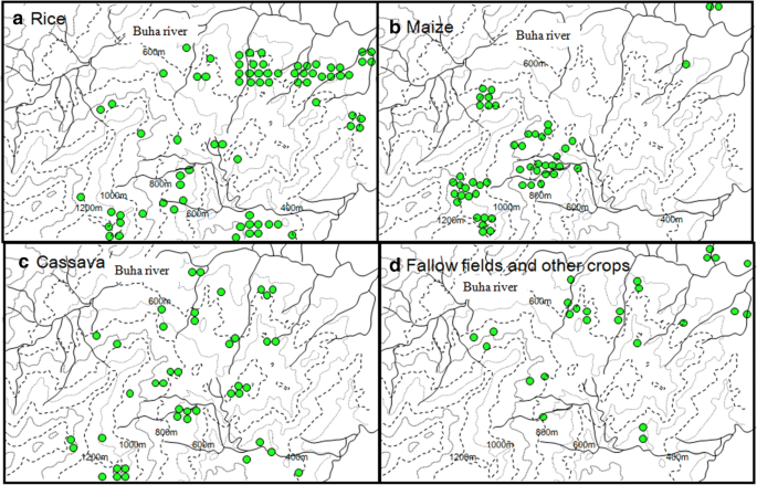Agricultural production and food consumption of mountain