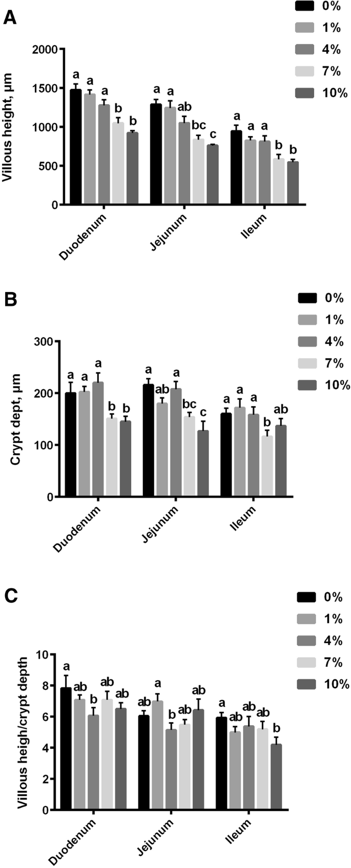 Effects of L -lysine·H 2 SO 4 product on the intestinal morphology