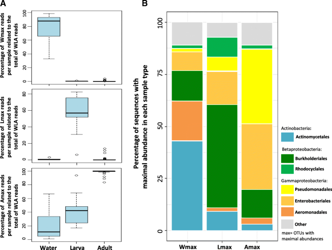 Factors shaping the gut bacterial community assembly in two