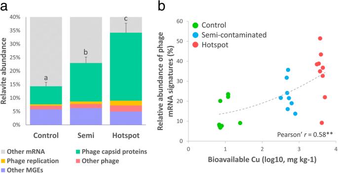 Long-term soil metal exposure impaired temporal variation in