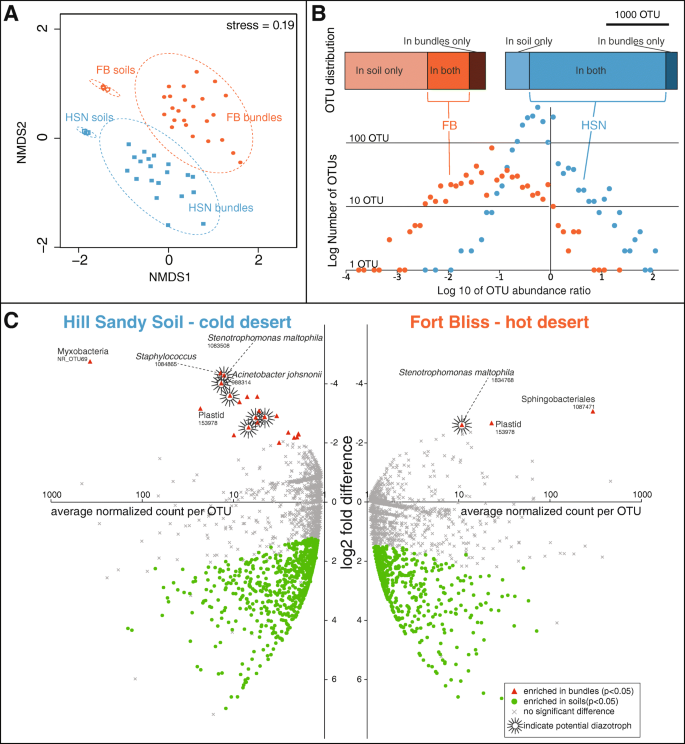 Spatial segregation of the biological soil crust microbiome around
