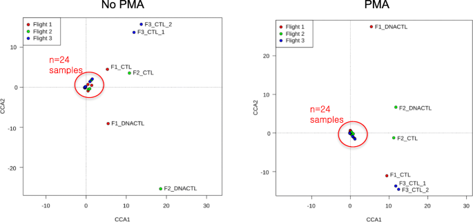 Characterization of the total and viable bacterial and