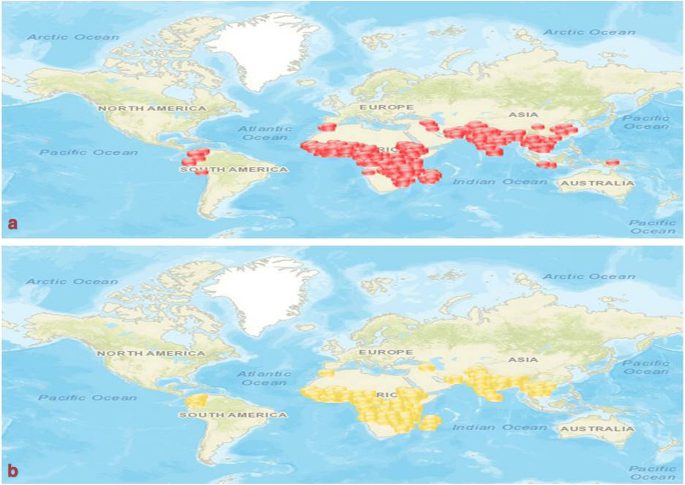Are malaria elimination efforts on right track? An analysis