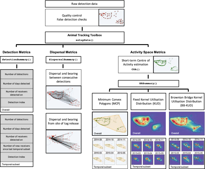A standardised framework for analysing animal detections from