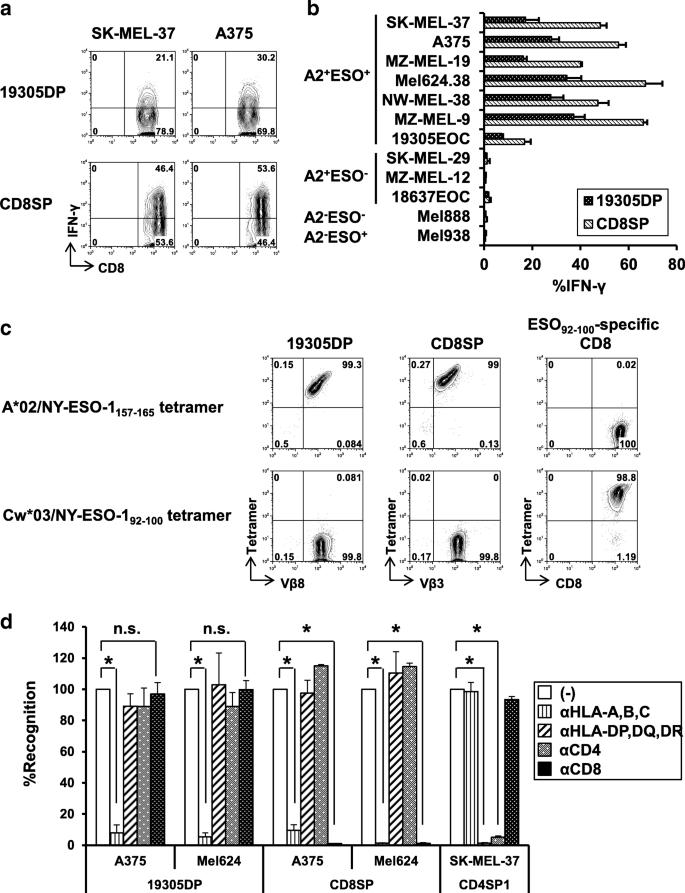 A rare population of tumor antigen-specific CD4 + CD8 +