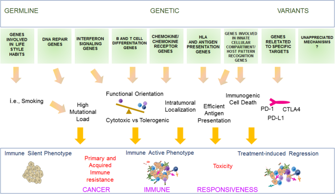 Toward a comprehensive view of cancer immune responsiveness