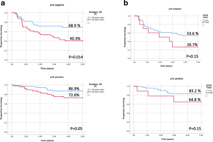 EGFR as a biomarker of smoking status and survival in