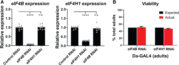eIF4B and eIF4H mediate GR production from expanded G4C2 in