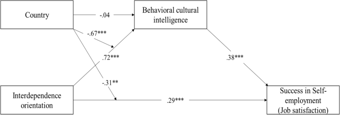 Impact of personal cultural orientations and cultural