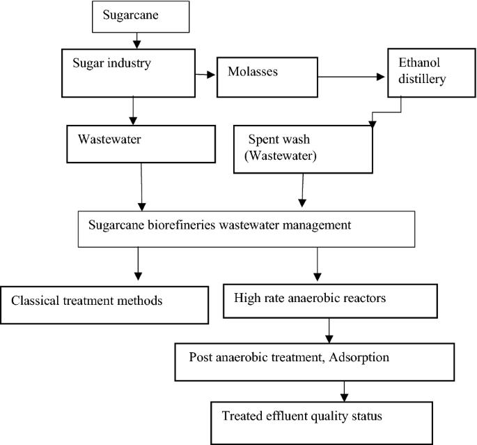 Sugarcane biorefineries wastewater: bioremediation