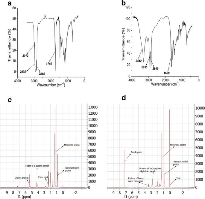 Synthesis of hydroxylated fatty amide from underutilized