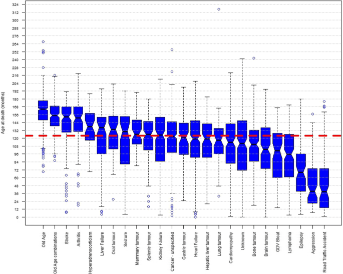 Longevity and mortality in Kennel Club registered dog breeds in the