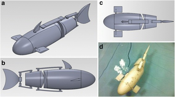 Kinematic study and implementation of a bio-inspired robotic fish