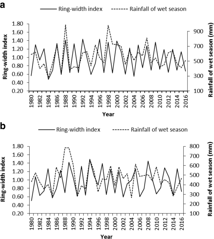 Climate forcing of tree growth in dry Afromontane forest fragments