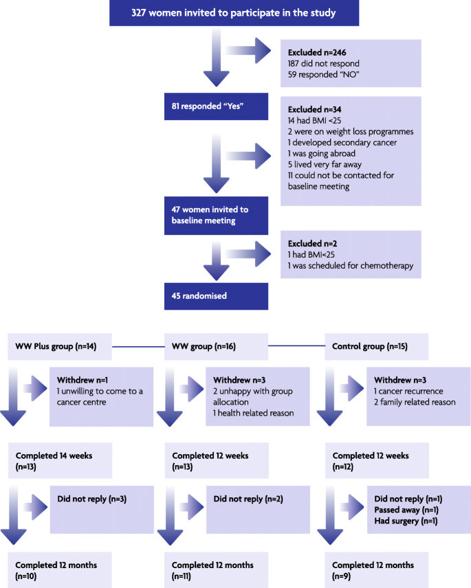 Pilot randomised controlled trial of Weight Watchers® referral with