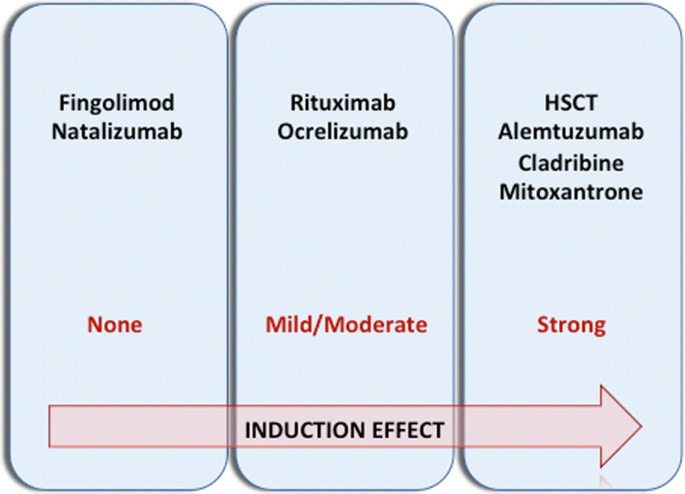 Induction treatment strategy in multiple sclerosis: a review