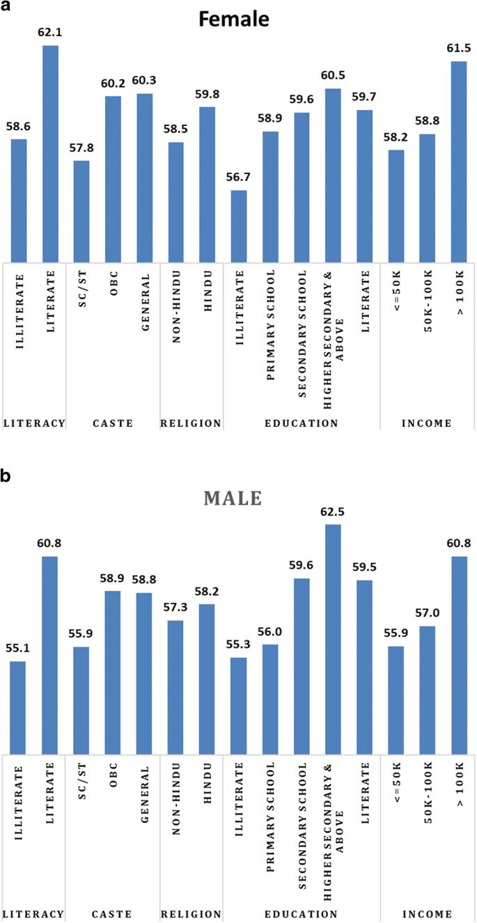 Socioeconomic disparity in adult mortality in India: estimations