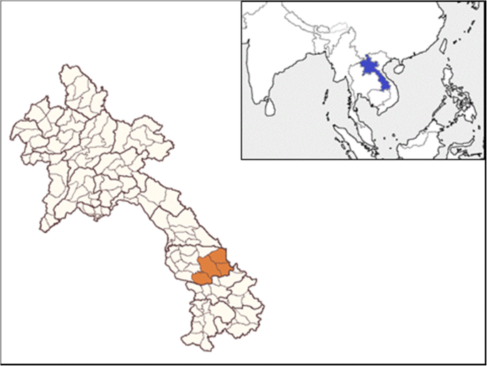 Malaria among foreign migrant workers in Savannakhet