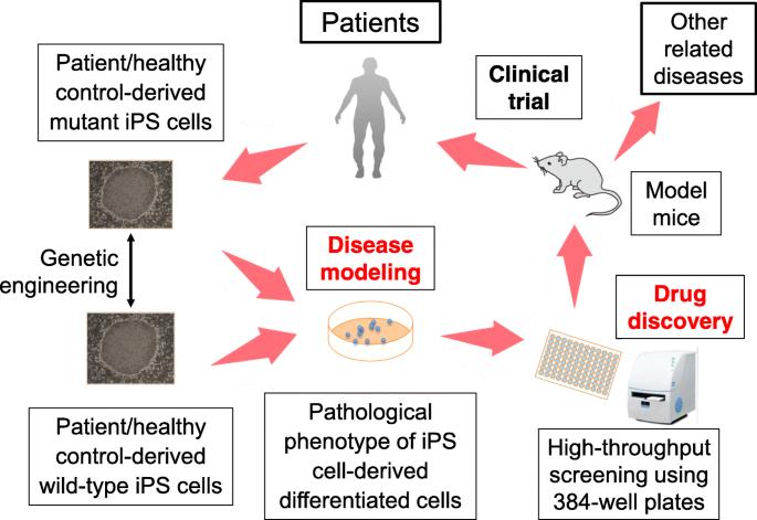 Induced pluripotent stem cells representing Nakajo-Nishimura