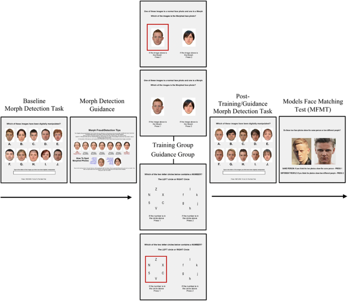 Detecting morphed passport photos: a training and individual
