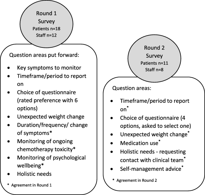 Delphi Survey To Inform Patient Reported Symptom Monitoring After Ovarian Cancer Treatment Journal Of Patient Reported Outcomes Full Text