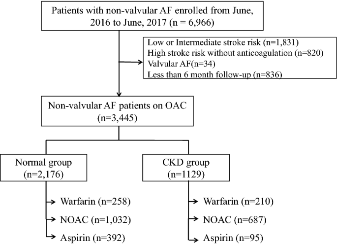 Differences In Anticoagulation Strategy And Outcome In Atrial Fibrillation Patients With Chronic Kidney Disease A Code Af Registry Study International Journal Of Arrhythmia Full Text