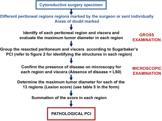 Peritoneal cancer diagnosis. Cancer peritoneal – simptome, cauze, diagnostic, tratament - Cancer