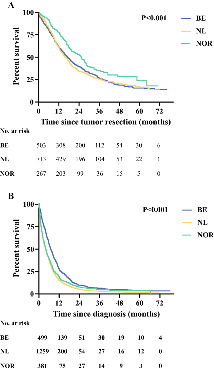 Treatment And Survival Of Elderly Patients With Stage I Ii Pancreatic Cancer A Report Of The Eurecca Pancreas Consortium Springerlink