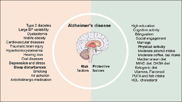 The Epidemiology of Alzheimer's Disease Modifiable Risk Factors and  Prevention   SpringerLink