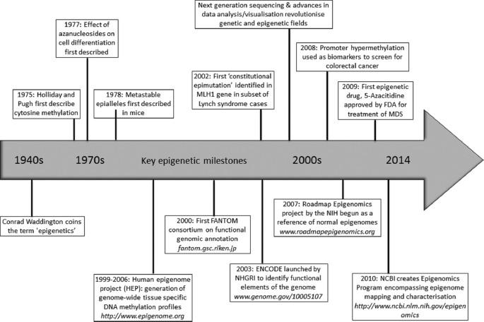 Genetic Determinants of Epigenetic Patterns: Providing
