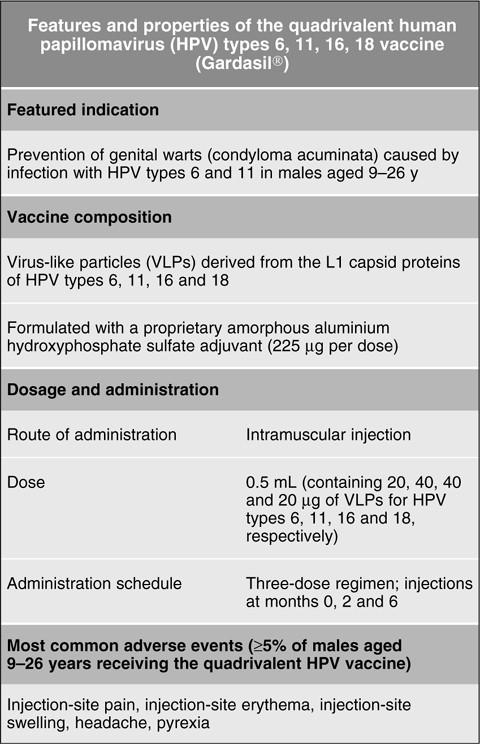 Hpv vaccine quadrivalent, Quadrivalent human papillomavirus vaccine side effects
