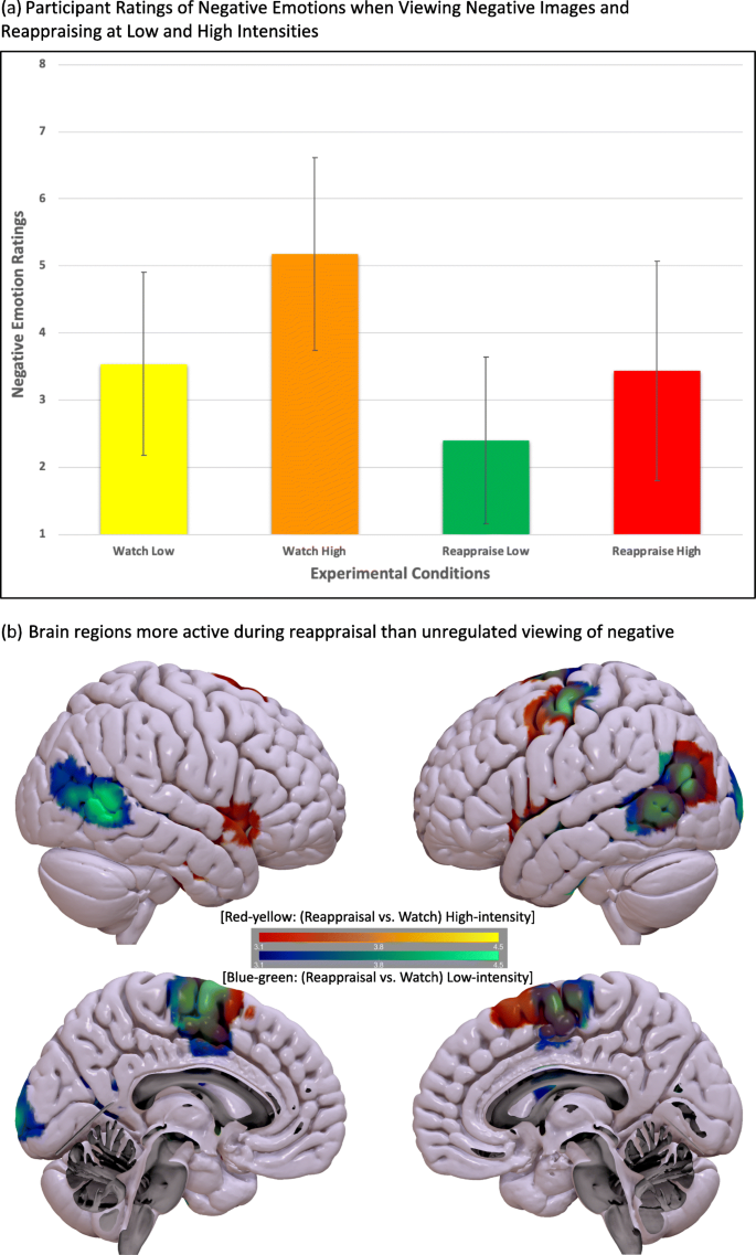 The neural bases of cognitive emotion regulation: The roles of ...