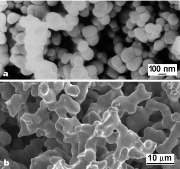 Direct electrochemical reduction of titanium dioxide to ...