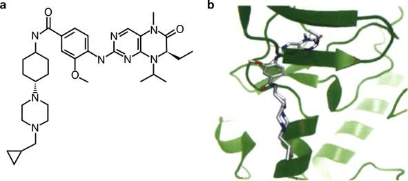 (PDF) Polo-Like Kinase 3 Appears Dispensable for Normal