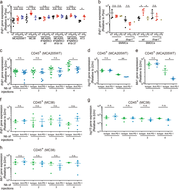 Sustained Type I Interferon Signaling As A Mechanism Of