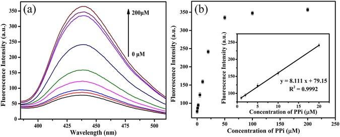 (PDF) Burst of reactive oxygen species in pedicel-mediated