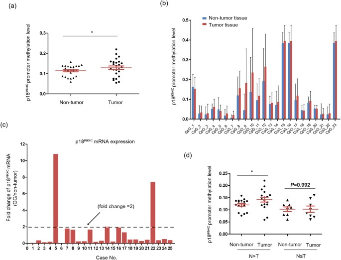 DNA methyltransferase 3b silencing affects locus-specific