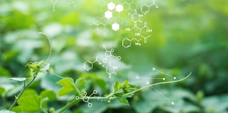 Mass Spectrometry for Plant Applications / Image: © ipopba / Getty Images / iStock