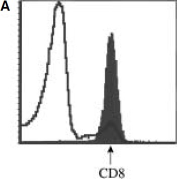 Fig. 3A