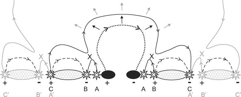 Figure 45: