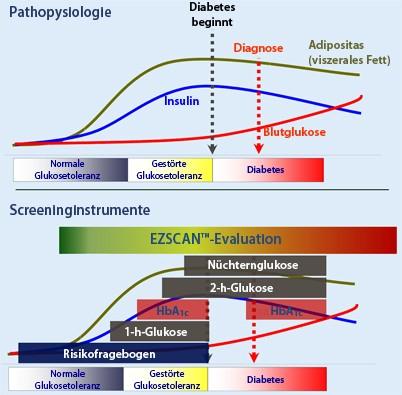 Diabetesscreening Und Vorsorge Springerlink